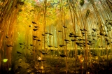 Cloud of Tadpoles by Eiko Jones ()