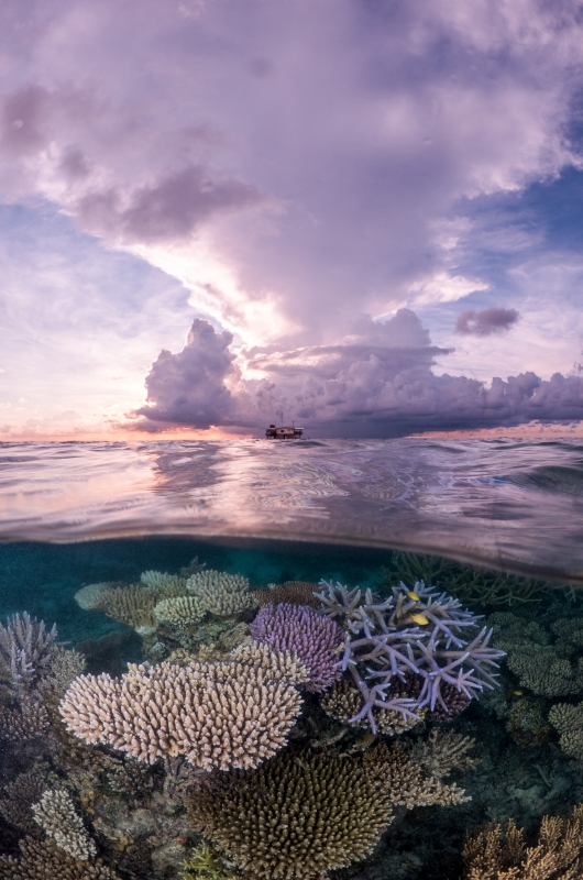 DEEP Indonesia 2016 Winning Image by Andrei