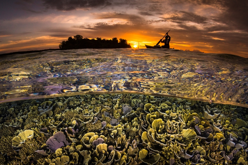 DEEP Indonesia 2019 Winning Image by Grant
