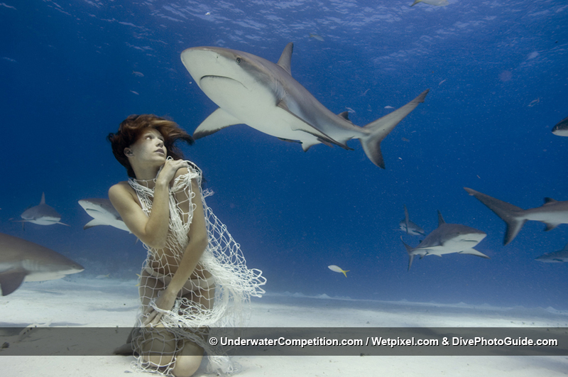 DEEP Indonesia International Underwater Photo Competition 2007 Winning Image by Todd Essick