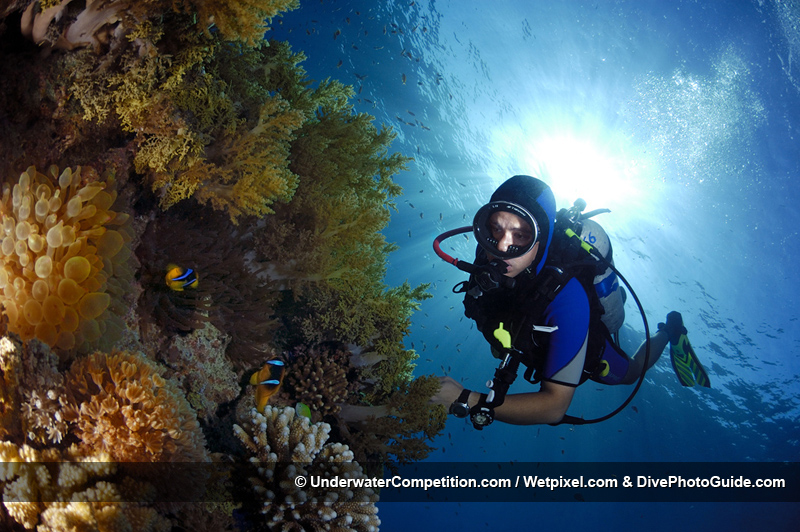 DEEP Indonesia International Underwater Photo Competition 2007 Winning Image by Oren Lederman