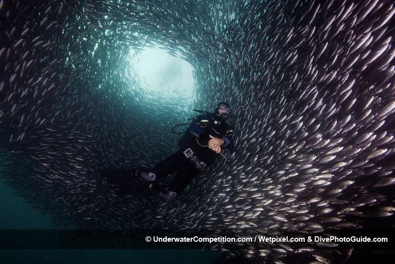 DEEP Indonesia International Underwater Photo Competition 2008 Winning Image by Yeang Chng